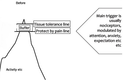 Normal Protective Pain